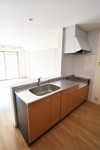 ソフィアⅡ / 201号室キッチン