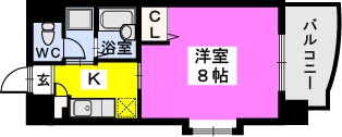 BRILLIANT36 / 205号室間取り